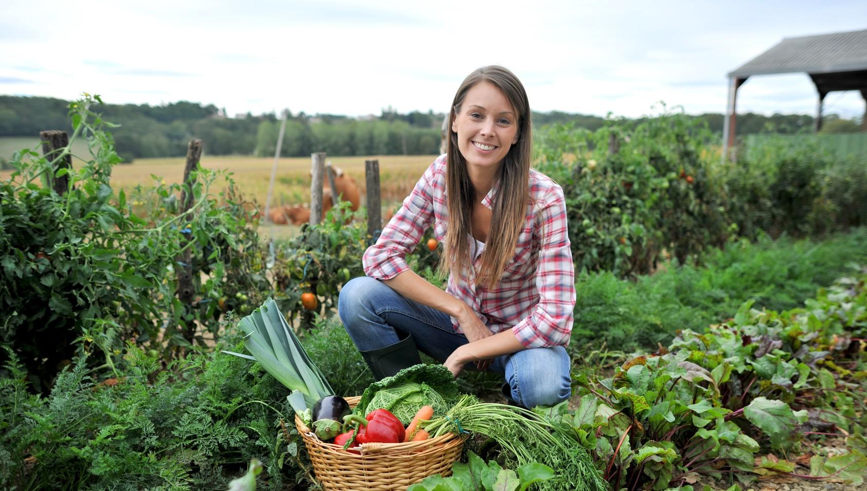 Agricoltura-e-giovani-PD-e1409570637704