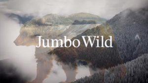 snowboard_jumbowild-patagonia-film
